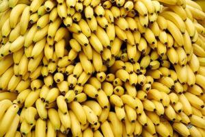 casco_banane
