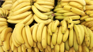 Bananas are shown at the K+G Food Mart in Detroit, Monday, May 8, 2006.   (AP Photo/Carlos Osorio)
