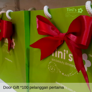 Door-gift-tinispa